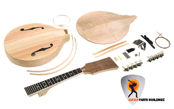 Acoustic Mandolin Kit